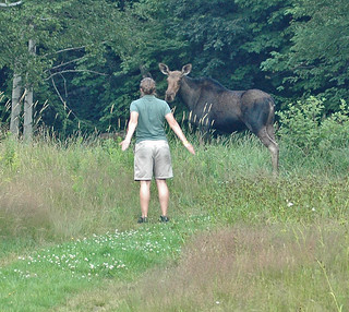 Meg the Moose whisperer | by Great Glen Trails