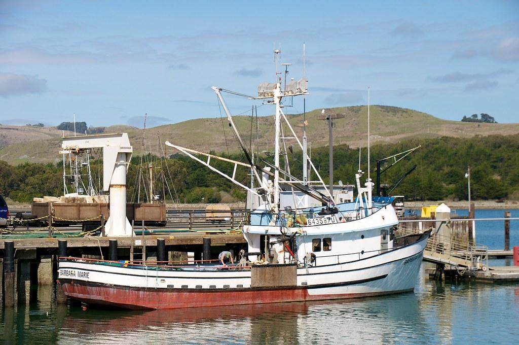 Fishing boat in bodega bay harbor don debold flickr for Bodega bay fishing reports
