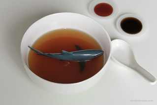 Sharks fin Soup | by plasticchef1