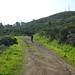 8_rebecca_hike