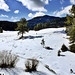 Snow in the Jemez Mountains