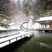 Kamo Park, Niigata under snow