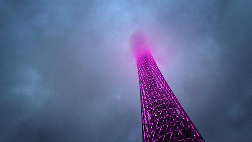 IMG_9490 Canton Tower, Guangzhou, China.