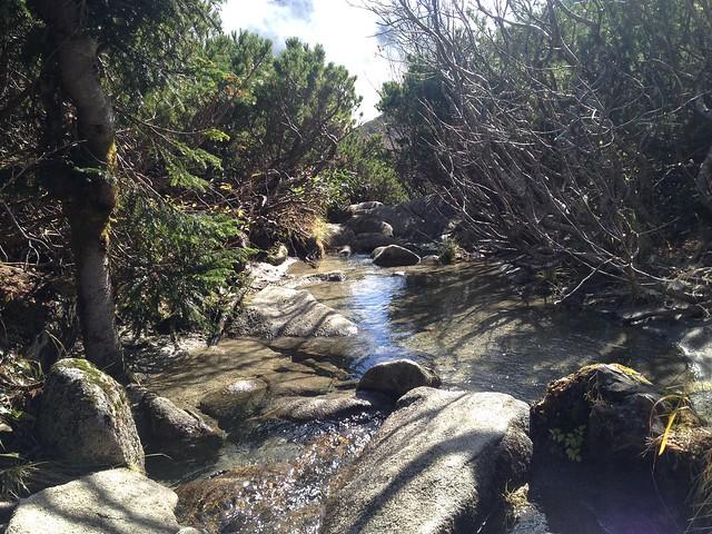 木曽駒ヶ岳 濃ヶ池 登山道