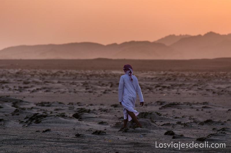 buscando tortugas en una playa de Masirah