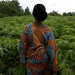 Felicienne is part of a women's group that produces cassava flour