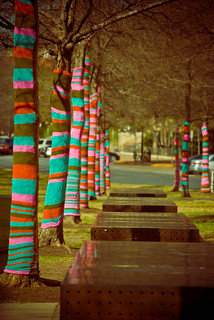 Knitta Trees and Benches | by patricklarson.com