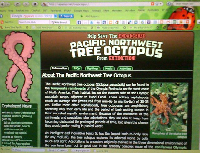 Tree Octopus website | Faux website at: zapatopi.net/treeoct ...