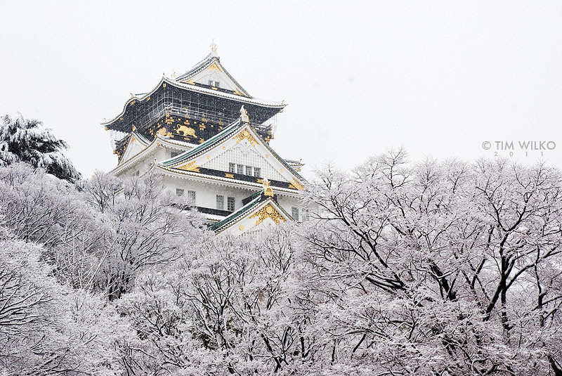 osaka castle in the snow 11th february 2011. Black Bedroom Furniture Sets. Home Design Ideas