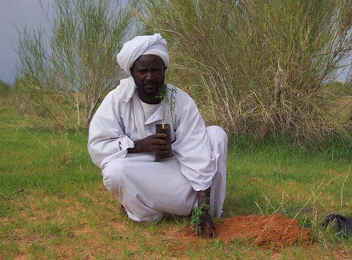 Fighting Climate Change | by UNDP Sudan