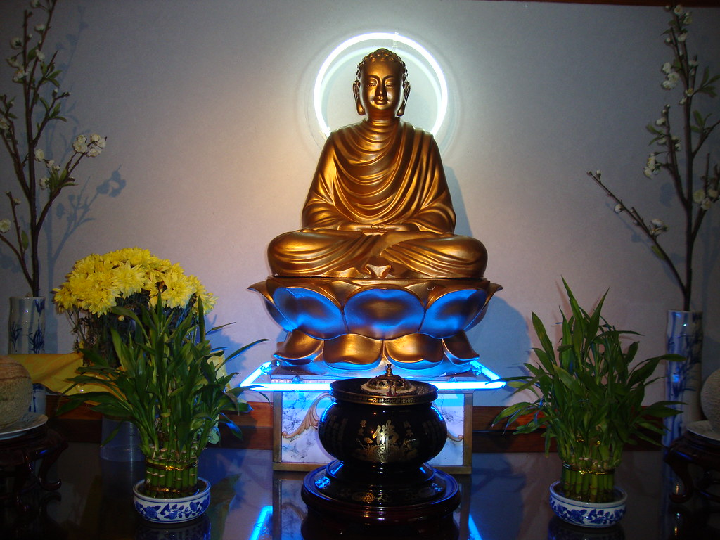 neon buddhist singles Zoosk is the online dating site and dating app where you can browse photos of local singles, match with daters, and chat you never know who you might find.