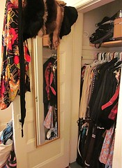 Link to Tenant Life: Coping with a Small Closet