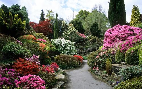 Rock garden at leonardslee gardens west sussex uk for Garden house design west sussex