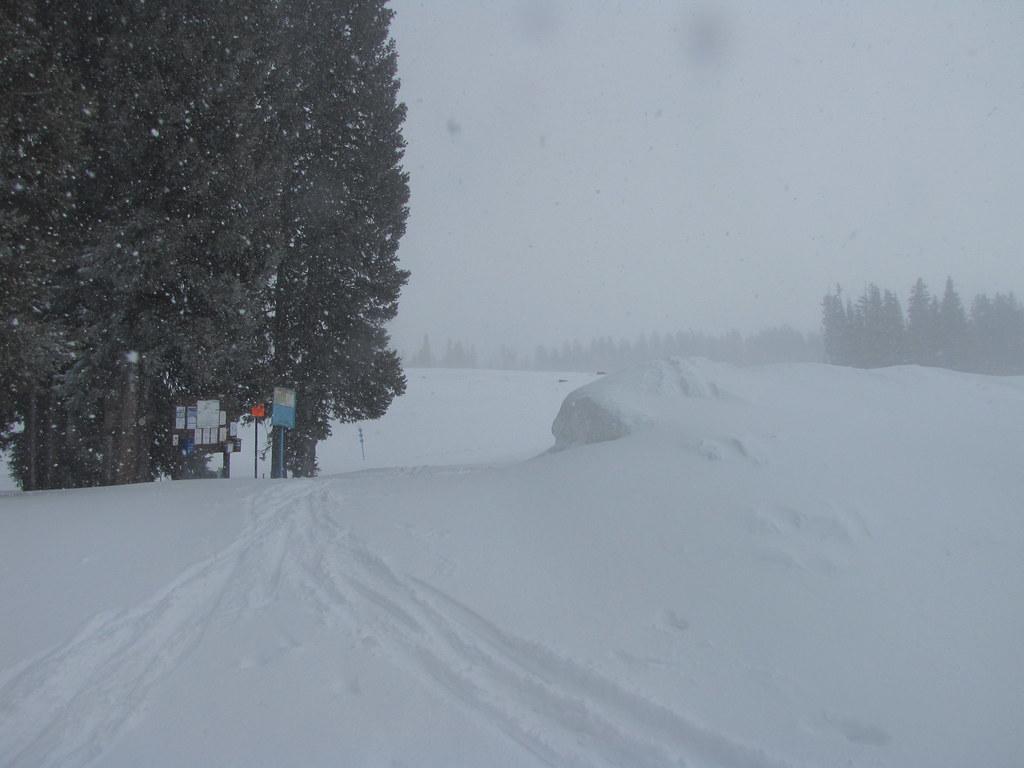 Powder Day Friday Skyway My Way Epic Snowfall At The