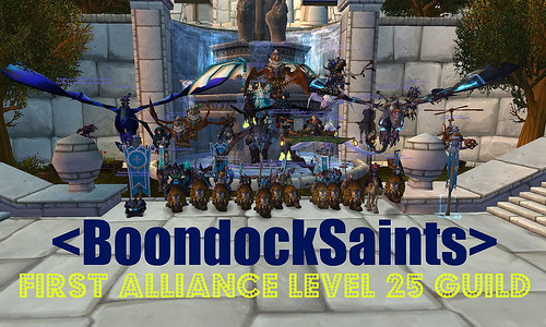 First Alliance Guild to Level 25! | by BDSGuild