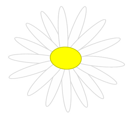 Image Result For Daisy Flower Color