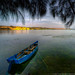 Blue Boat On Grassy Water