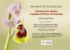 Exposición orquideas by Jordi Serapio