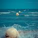 splashing through the world // la grande motte (southfrance)