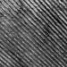 Black & White Texture