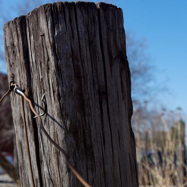 3 études sur un pieu de clôture en bois  Je me suis amusé  ~ Cloture En Bois