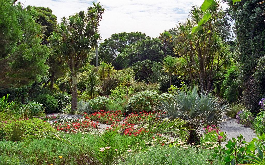 tresco abbey gardens scilly isles uk a superb sub trop