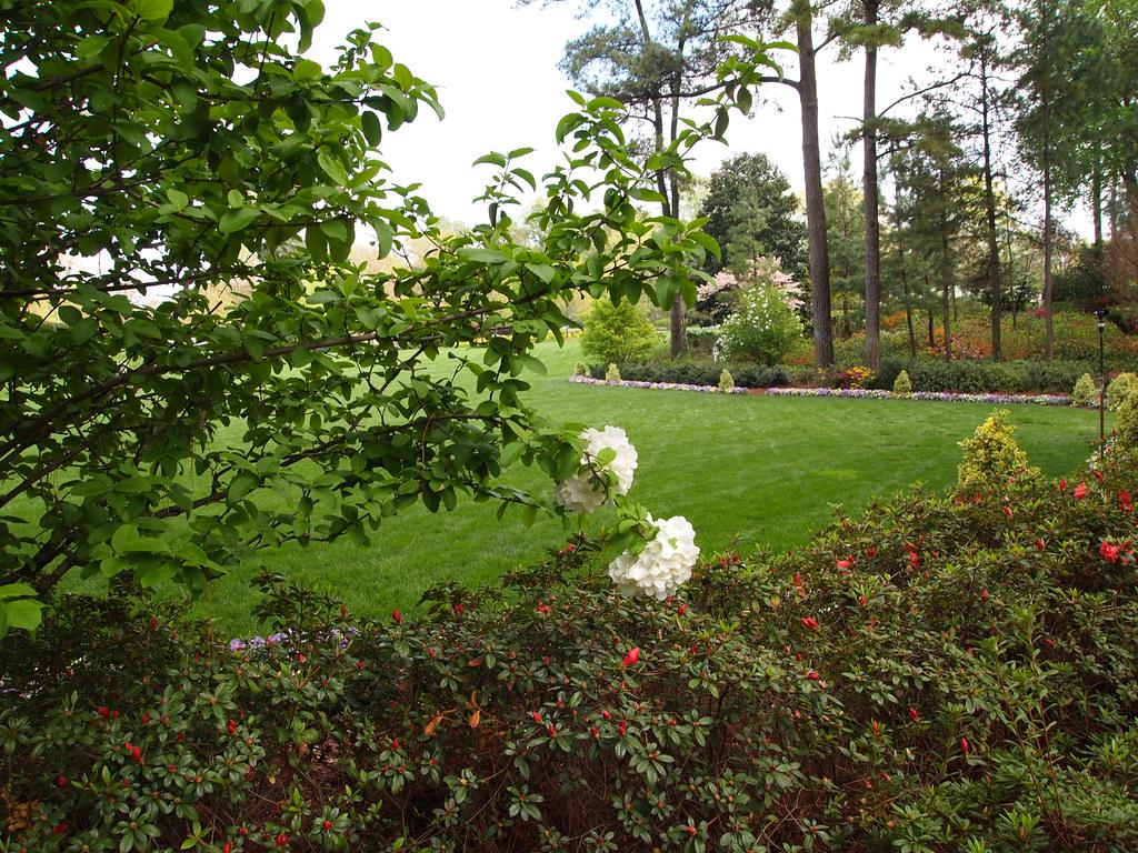 Wral Raleigh Nc Azalea Gardens Ray Rivera Flickr