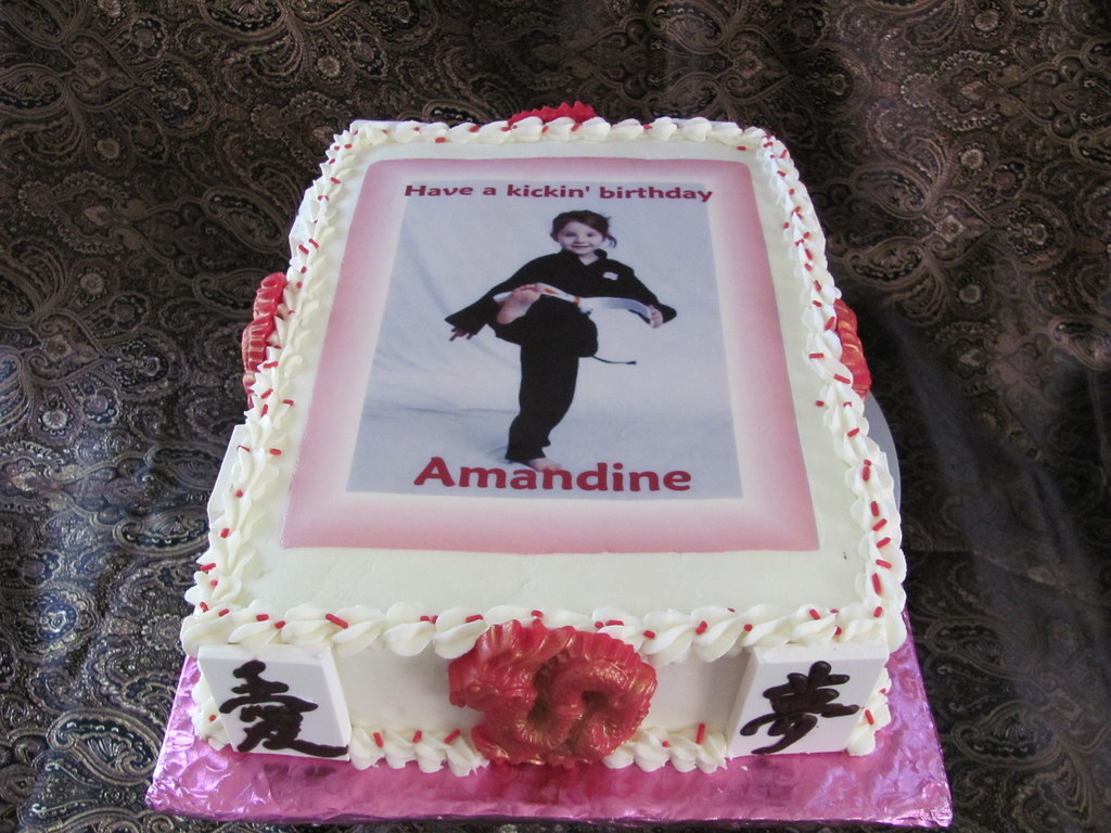 Karate Cake For Amandine 6 24 11 Chocolate Fudge 9x13x2