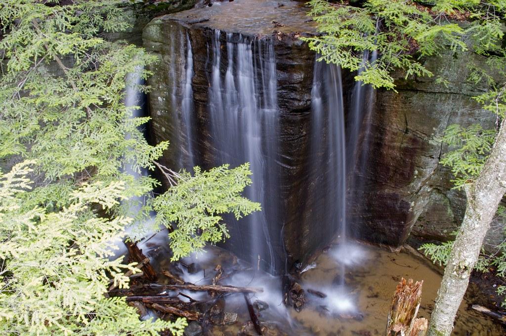Foot  Forest River Travel Trailer Shamrock