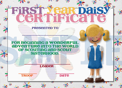 Girl Scouts First Year Daisy Completetion Award ...