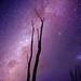 The Beautiful Milky Way 2