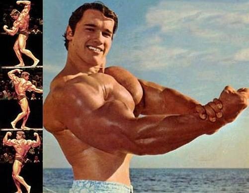 Mr. Olympia Arnold Schwarzenegger 1970-1975 | Peter