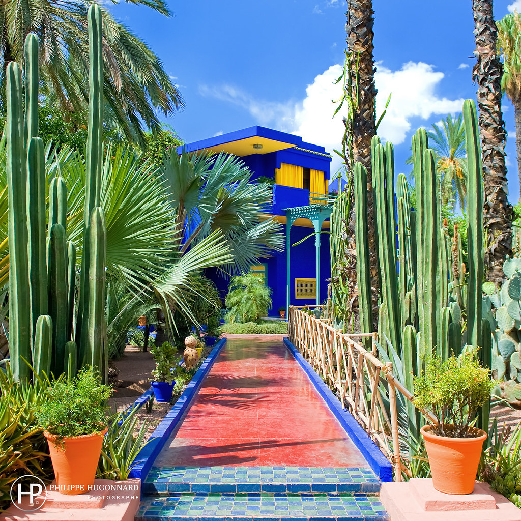 le jardin majorelle de marrakech au maroc 04 philippe hug flickr. Black Bedroom Furniture Sets. Home Design Ideas