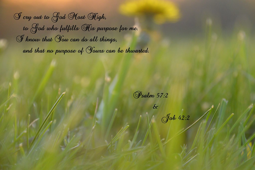 Psalm 57 2 Amp Job 42 2 I Know That My God Has A Purpose