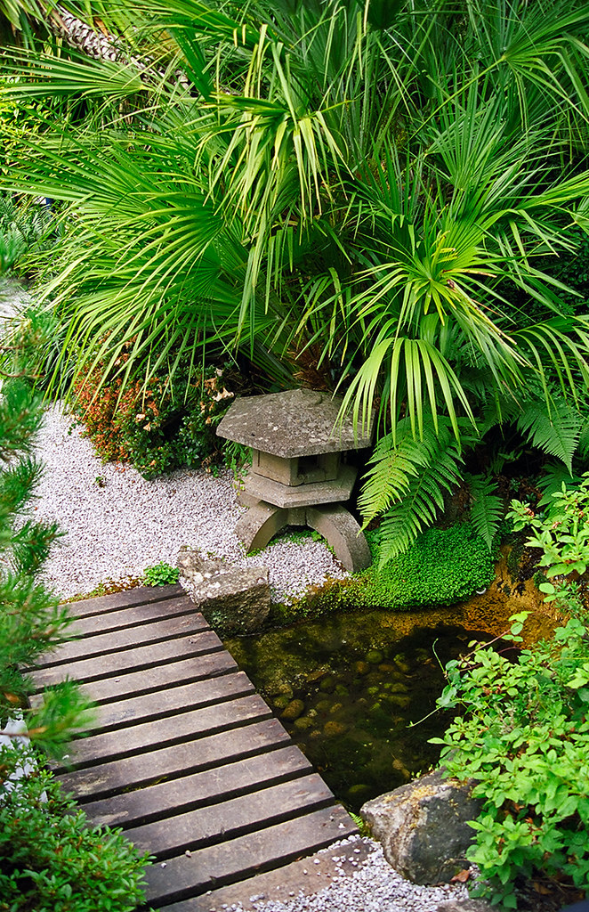 Lamorran house gardens cornwall uk a coastal garden wi for Japanese garden design ideas uk