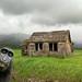 Idaho farmhouse photobomb
