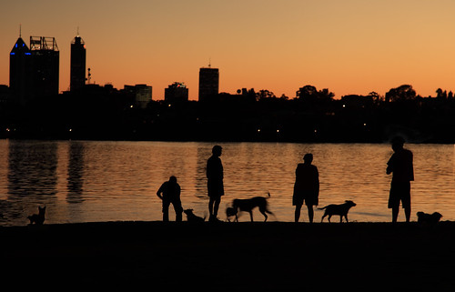 ANZAC Day sunset with dogs | by photos by LeeB