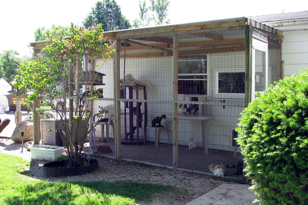 Cat Enclosure For Sale Gold Coast