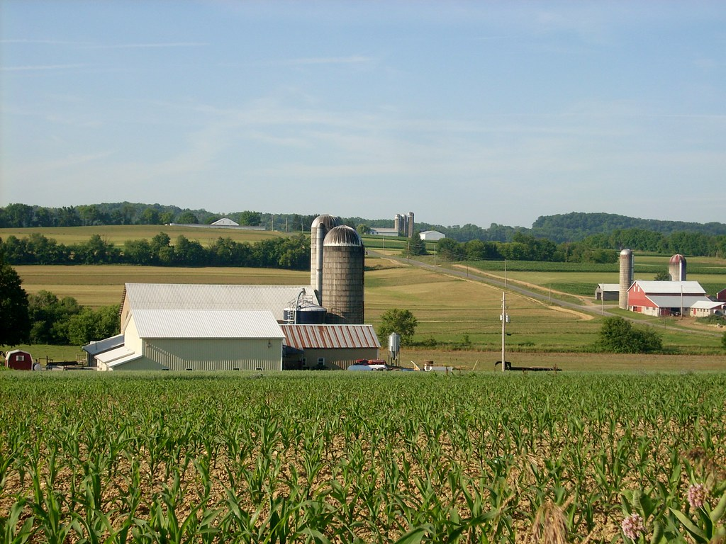 Farms In Buffalo Township Three Dairy Farms In Buffalo