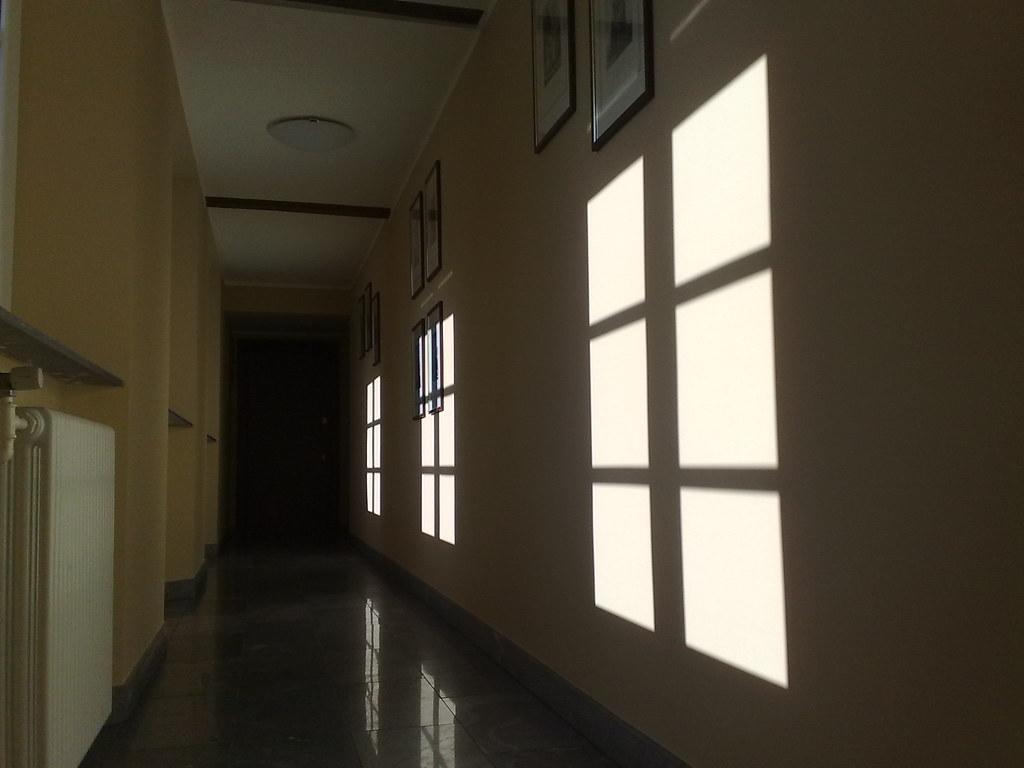 Le contro finestre del corridoio le tracce del sole del - Uccelli che sbattono contro le finestre ...