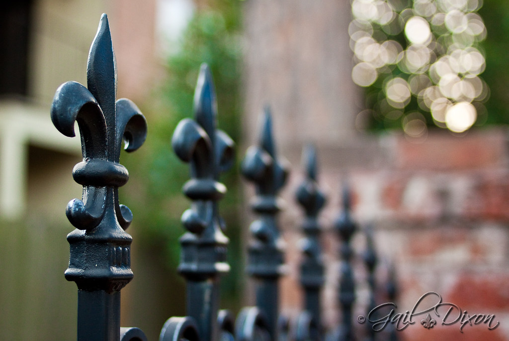 337 365 Fleur De Lis Fence First Afternoon In Baton