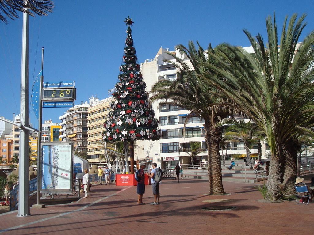 arbol de navidad playa de las canteras feliz navidad