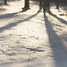 long shadows in the snow