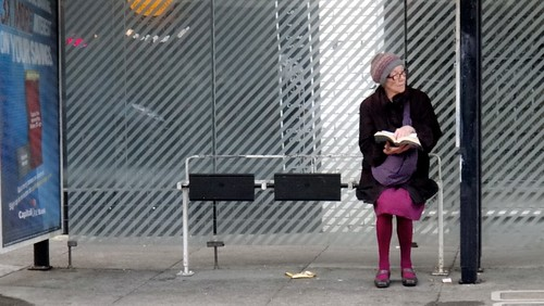 Purple Bus Stop Reader | by Lynn Friedman