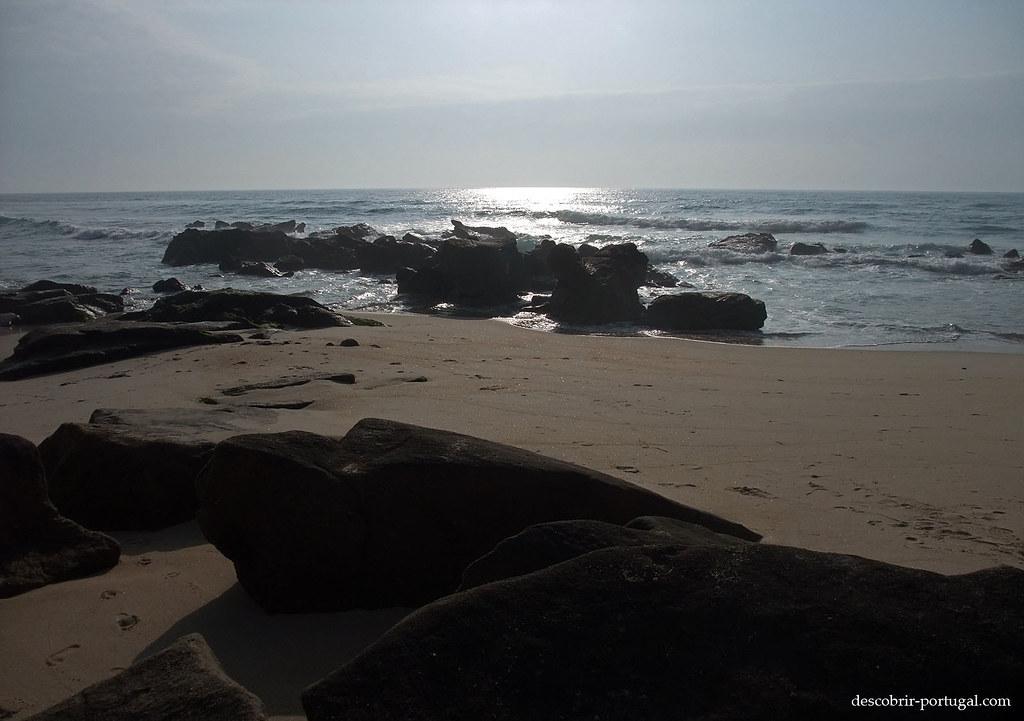 Les cailloux, face à l'immensité de l'Océan