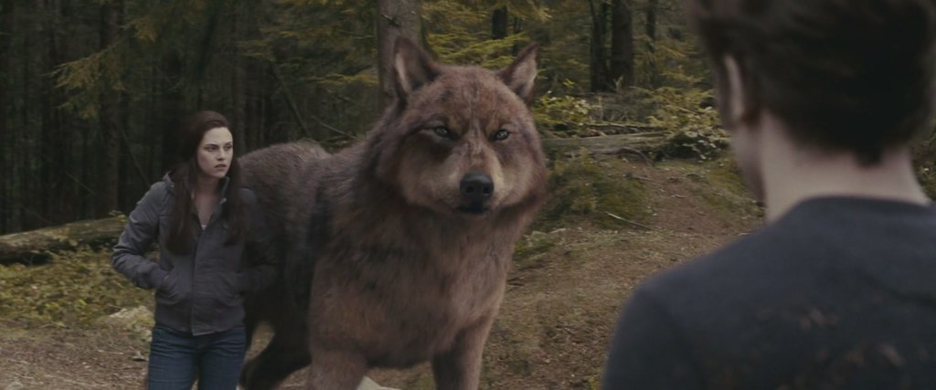 Blog De Wolf In Twilight – Dibujos Para Colorear