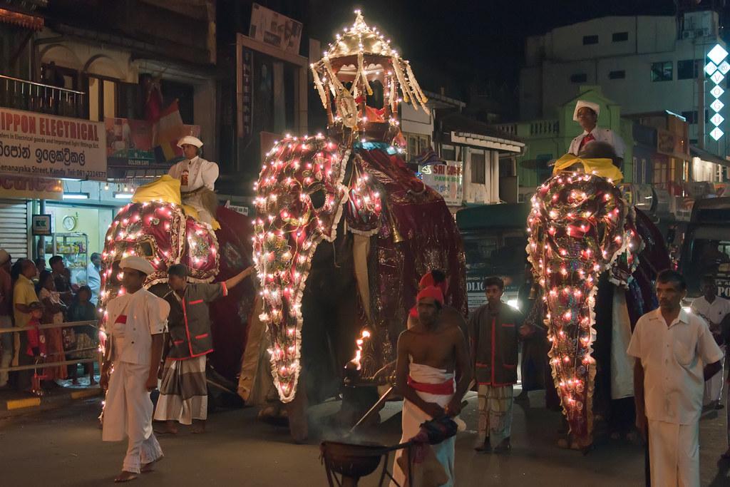 Elephant Parade, Perahera Buddhist Festival, Kandy, Sri La ...