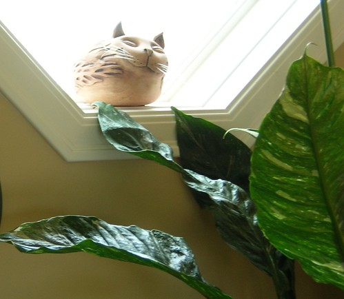 Cascadia Suite - ceramic cat snoozing in a sunny window | by duardo888