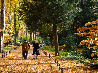 DE Landscape 08: Tiergarten Old Couple | by francisco_osorio