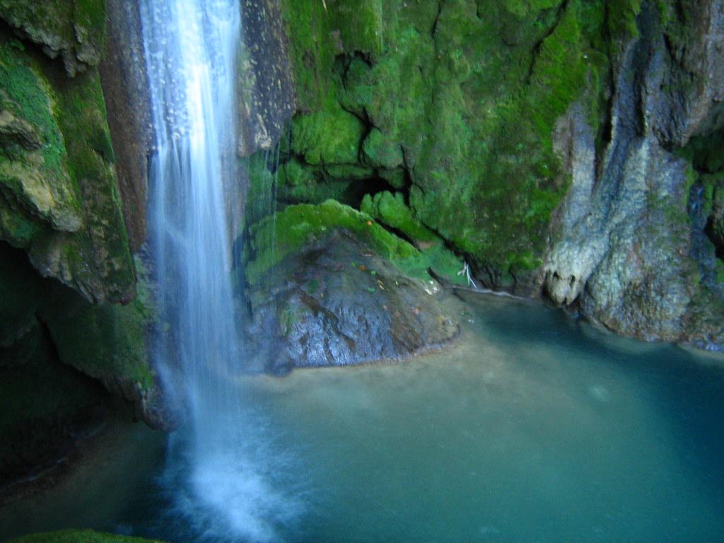 Natural Water Birth Facts